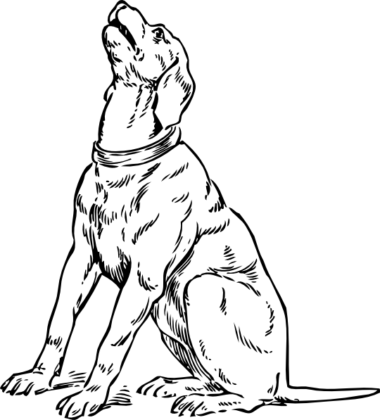 lab coloring pages - photo #36